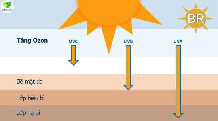Tia UV là gì?